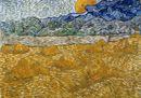 Il senso di Van Gogh per la terra