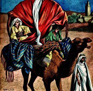 """Dromedario utilizzato come mezzo di trasporto. Incisione tratta da """"La Terre Illustree"""" n. 73, 24 marzo 1892. Tunisia."""