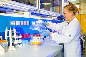 Uno dei nuovi laboratori dell'Ospedale Bambino Gesù di Roma