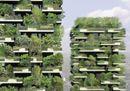 3_Verde verticale