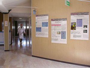 L'ospedale di Negrar, vicino a Verona, specializzato in malattie tropicali e punto di riferimento regionale per ebola. In copertina, il dottor Andrea Angheben.