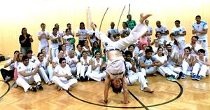 Una manifestazione di capoeira in una scuola di Vienna.