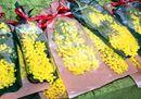 Festa della donna: regaliamo fiori (e non solo mimose)