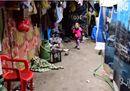 Dalla Siria a un rifugio di plastica