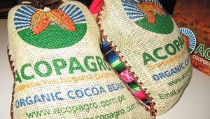 Sacchi di cacao prodotto da Acopagro.