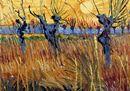 Van Gogh, GELSI POTATI AL TRAMONTO, 1888