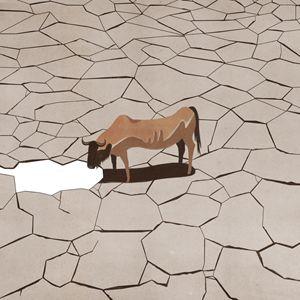 """Il povero bufalo che vive nelle zone desertiche è rimasto quasi senza acqua da bere. Un'altra delle illustrazioni del libro """"D'acquà a là"""" voluto da Ferrarelle."""