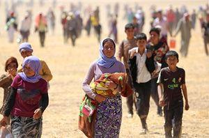 Yazidi in fuga.