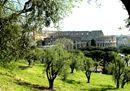25_Colosseo_ph Bruno Angeli.jpg