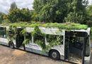 03 ASF Bus Garden_Leonardo Magatti.jpeg