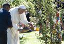 Pope Francis30.jpg