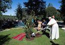 Il Papa pianta un albero in Vaticano e consacra il Sinodo a San Francesco