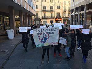 Una manifestazione a Vercelli a favore delle telecamere nei nidi e nelle scuole primarie