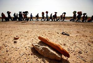 Sfollati giunti dal Bangladesh lasciano la Libia in preda alla guerra civile e cercano sicurezza in Tunisia. In alto: l'arrivo in Rwanda di profughi della Repubblica democratica del Congo. Le foto di questo servizio sono dell'agenzia Reuters.