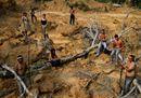 Amazzonia in fiamme, la lenta agonia del polmone verde del pianeta
