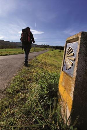 Il simbolo della capasanta è il segnale da seguire per non smarrire la giusta via verso Compostela.