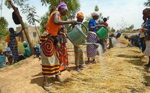 Donne al lavoro in Burkina Faso, nell'ambito di un progetto di AES-CCC, sostenuto da Caritas e Focsiv.