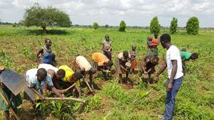 Giovani agricoltori della scuola di Alito (foto Africa Mission).