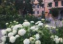 giardini.tif