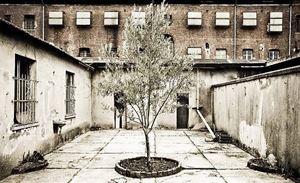 L'Eremo del silenzio presso l'ex carcere Le Nuove a Torino